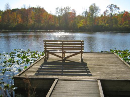 Lancaster Lake Bench